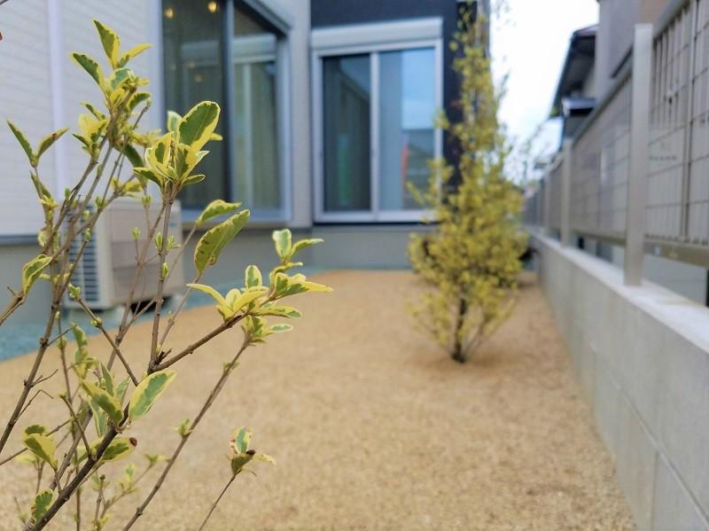 熊本市東区小山5丁目 新築一戸建て 4号地モデルハウス・庭