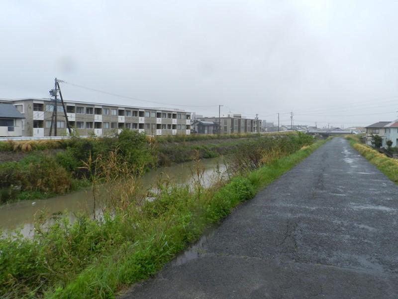 鹿化川:一晩中激しい雨が降り続いた日でしたが、この程度の水位でした。これなら雨が降っても安心ですね。(降水確率90%、31㎜/h)